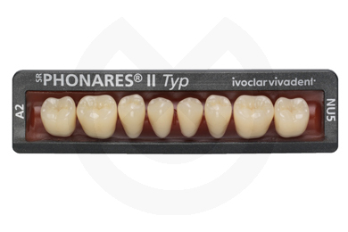Product - SR PHONARES II Posteriores