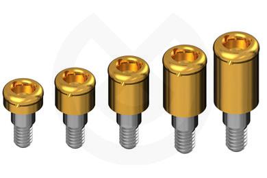 Product - PILAR TIPO LOCATOR CONEX. INT. ZIMMER® SCREW-VENT® 4,5 + SET DE PROCESADO DE NYLON