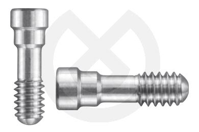 Product - TORNILLO P/IMP TIPO STRAUMANN Ø4,8 CONEX.T06
