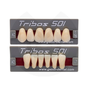 Product - DIENTES TRIBOS 501 ANTERIOR